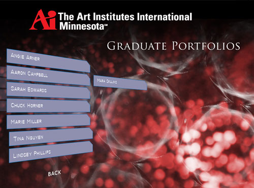 the art institutes international admissions project
